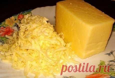 Como preparar las cestitas de queso - la receta, ingridienty y la fotografía