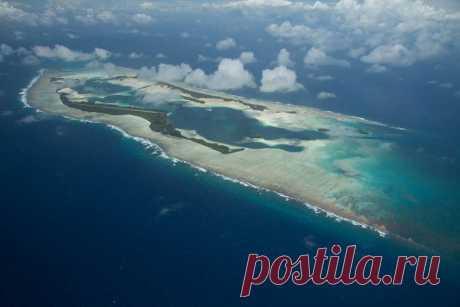 Тайна проклятого острова В тысяче миль к югу от Гавайев находится остров-атолл Пальмира. На первый взгляд – это красивейшее место, практически земной рай. Но в этом раю есть прямая дорога, ведущая в ад. На Пальмире много странностей, это довольно необычное место. Красота острова завлекает. Тут есть и замечательные песчаные пляжи, и пышная растительность, и красивейшие рифы и лагуны.