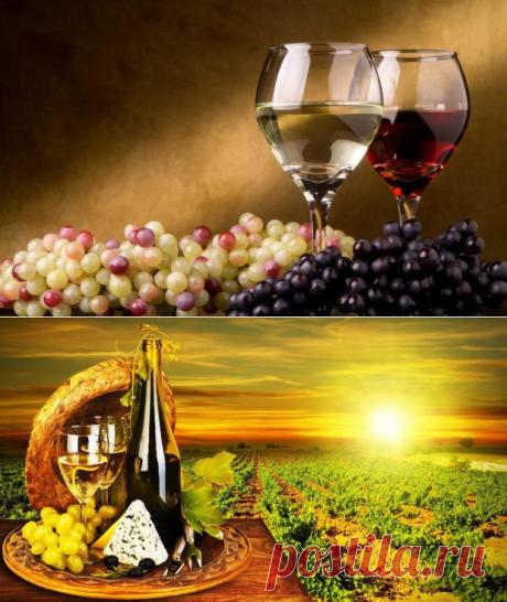 Тонкий вкус: как сделать домашнее вино по уникальному рецепту - Досуг - Кулинария на Joinfo.ua