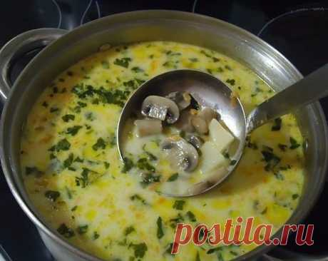 Суп из шампиньонов Суп из шампиньонов Ингредиенты: ● 15–20 шампиньонов; ● 1 морковь; ● 2 луковицы; ● 2–3 картофелины; ● 2,5 л воды; ● 250 г сметаны; ● cоль — по вкусу.