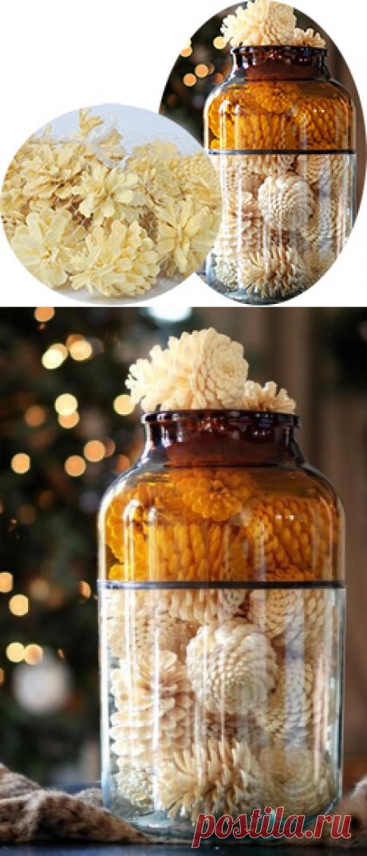 Как отбелить шишки для декора