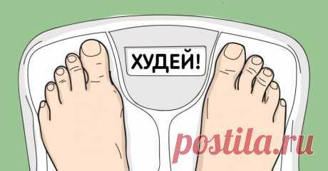 Как похудеть за 7 дней - Мудрые советы  Что только не делают милые дамы для снижения веса и утонченной стройности: ограничивают себя в еде (а то и вовсе голодают), изнуряют тело физическими нагрузками, проходят курс невыносимого массажа… Этот список можно продолжать и продолжать. Как бы то ни было, питание — первое, на что стоит обратить внимание при похудении. Любой шаг на пути к желаемому весу должен сопровождаться постоянным анализом того, что вы едите на протяжении дня...