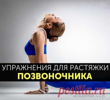10 лучших упражнений для растяжки позвоночника
