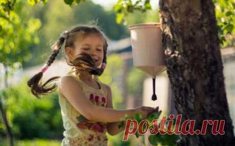 Очень важно руки мыть: несколько отличных идей умывальников для участка | Краше Всех