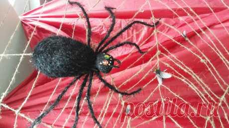 21.04.16 закончила паука
