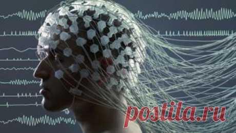 Ученые рассказали, как улучшить память и работу мозга - Mail.ru Новости