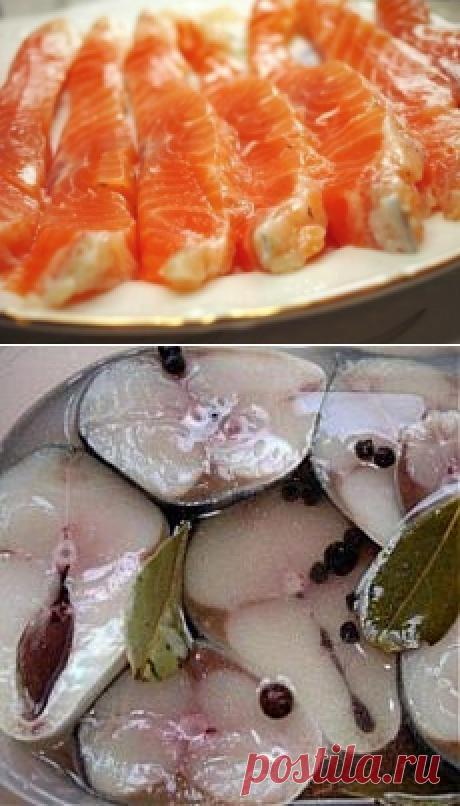 Поиск на Постиле: маринады для рыбы