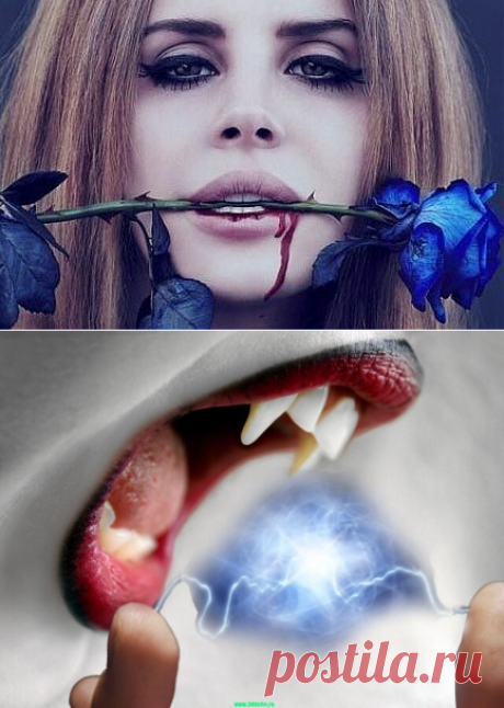 3 способа защитить себя от энергетического вампира | Религия,Магия,Приметы | Яндекс Дзен
