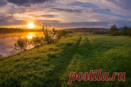 Река Молога, Вологодская область Автор фото: Марина Мурашова