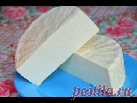 Пошехонский сыр в домашних условиях. Мастер-класс