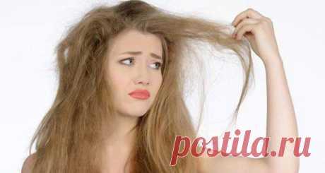 Простой способ сделать волосы густыми и пробудить спящие луковицы! - Леди Зефирка