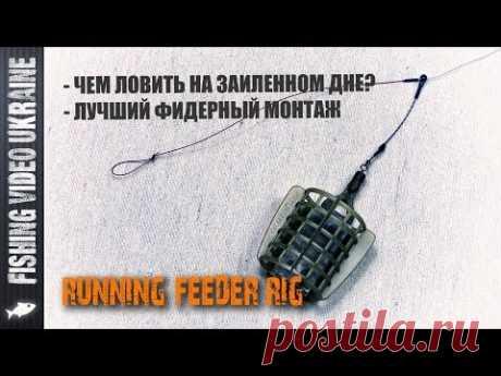 ЛУЧШИЙ ФИДЕРНЫЙ МОНТАЖ - RUNNING FEEDER RIG С ОТВОДОМ | FishingVideoUkraine
