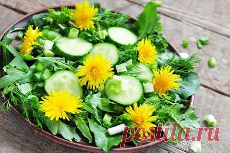 ༺🌸༻Зеленые салаты из диких растений