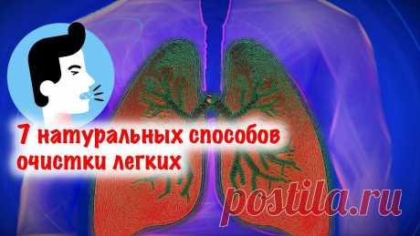 Как удалить бронхиальную слизь и облегчить дыхание: 7 натуральных способов очистки легких Это важно и для курильщиков, и для предупреждения пневмонии!