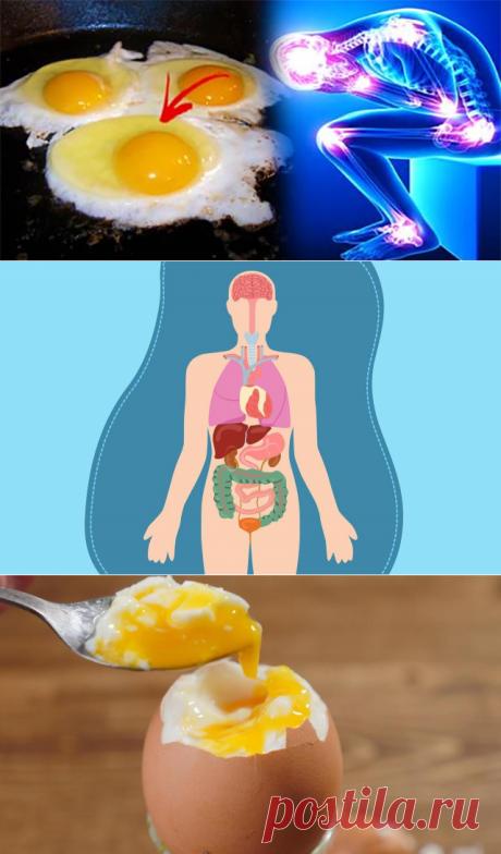 Что может произойти с организмом, если съедать по 3 яйца в день? Кто бы мог подумать!