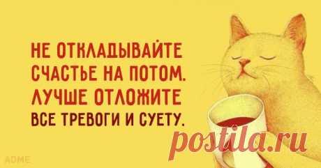 Солнечные открытки с правильным отношением к жизни