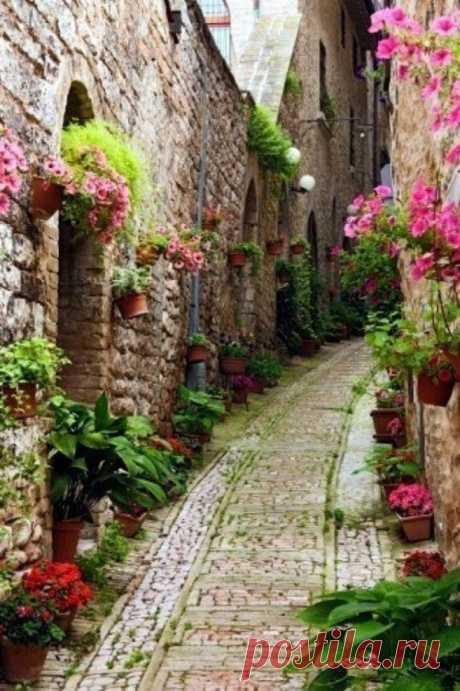 Las callecitas confortables con los colores. La Alsacia, Francia