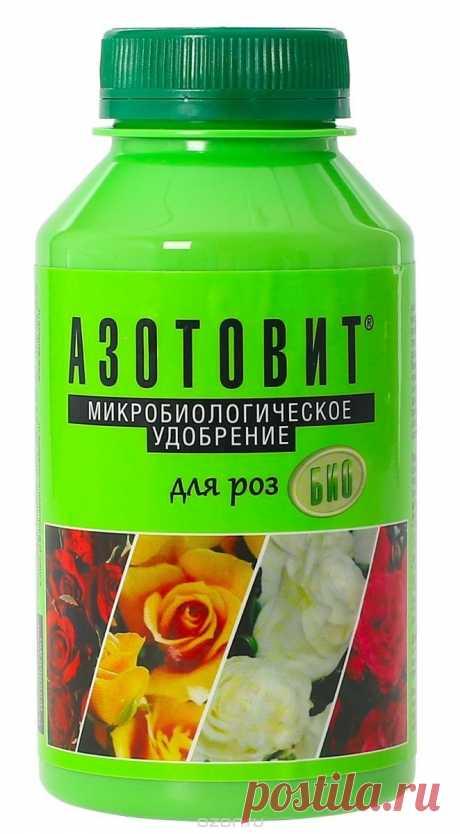 """Удобрение """"Азотовит. Для роз и садовых цветов"""", 220 мл   Купить с доставкой   My-shop.ru"""