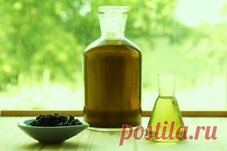 Используйте силу природы! Полезное масло из крапивы | Цветочный дом Самсон Букет | Яндекс Дзен