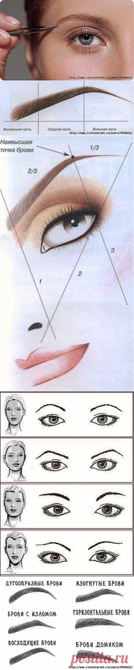 Коррекция бровей в домашних условиях – подробные инструкции с фото. Как выбрать форму бровей – советы визажистов..