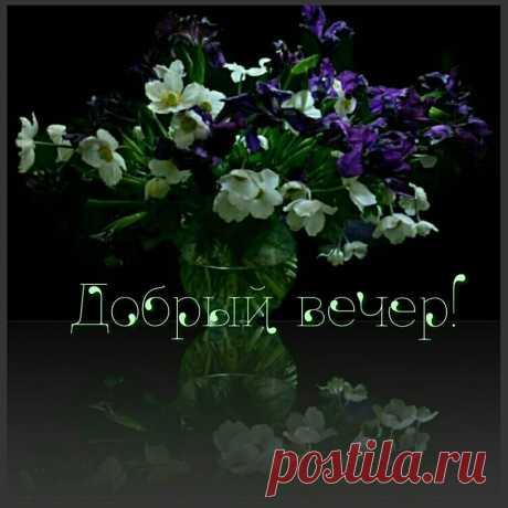 (14) Зина Таирова