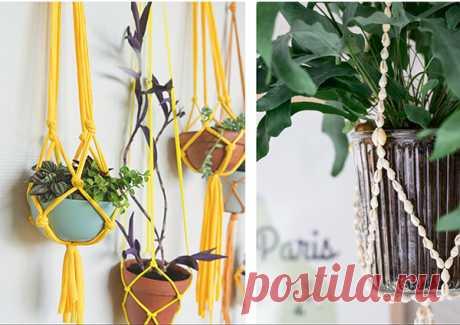 Если для растений не хватает места, используйте подвесные кашпо.