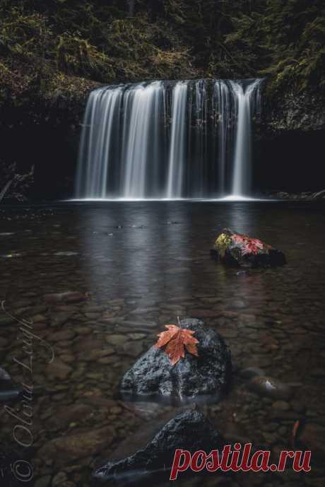 제목 없음 — superbnature: hoegne river by edithanatur...