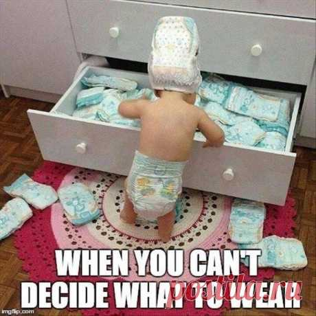 When you can't decide what to wear - Gag Bee