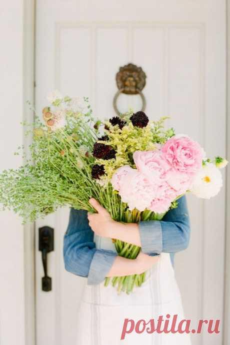 Сколько бы мы ни говорили о пустоте жизни, иногда достаточно одного лишь цветка, чтобы нас разубедить.  Анатоль Франс