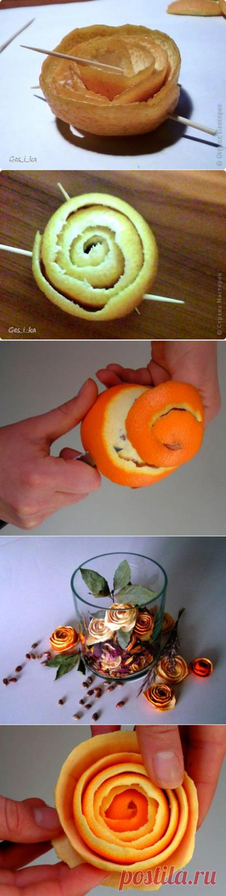 Все про апельсиновые розы