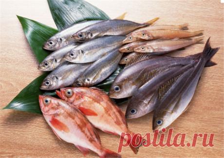 """""""Рыбные секреты"""". Советы для тех, кто к рыбке на """"вы"""" — Полезные советы"""