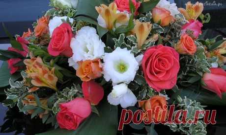 133647_bukiet_kwiatow.jpg (1280×768)