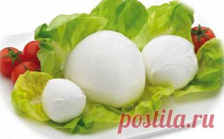 Сыр Моцарелла: что это такое и как его едят, польза и вред продукта Сыр Моцарелла: что это такое и как его едят, польза и вред продукта. Содержание витаминов и полезных минералов. Рецепты приготовления с сыром Моцарелла.