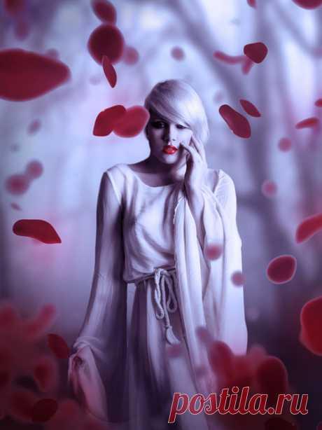 PhotoshopSunduchok - Коллаж с лепестками роз