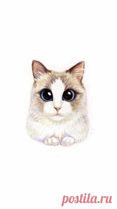 Милые мордочки кошек