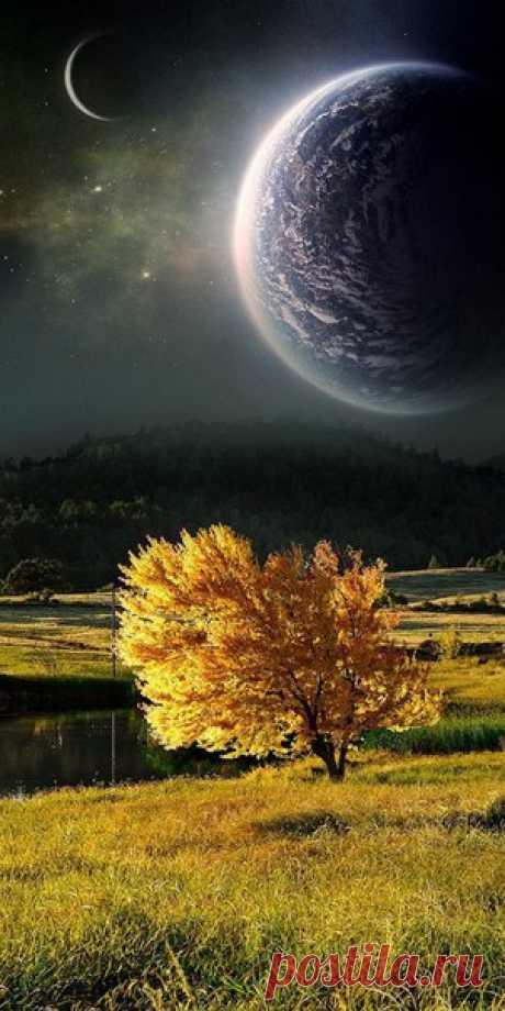 Прекрасные примеры фотографий с вертикальныой панорамой