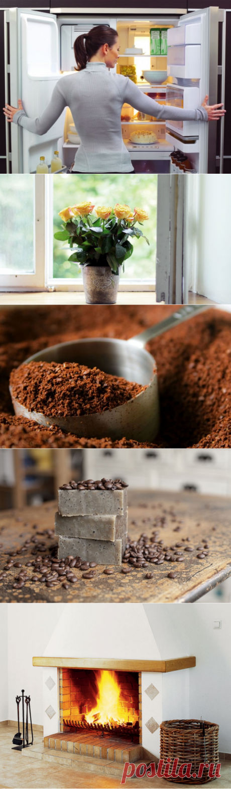 6 household problems which with ease will be solved by usual coffee — Useful tips