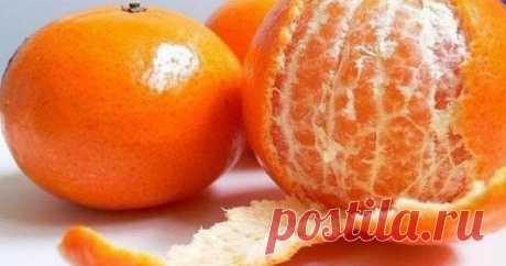 После этой статьи ты никогда не выбросишь кожуру мандарина Мандариновая кожуратак приятно пахнет! Вдыхаешь этот сильный аромат и сразу же заражаешься праздничным настроением.Уникальный плод отличается не только сочной, аппетитной мякотью, которая даже слаще апельсиновой. Испанское названиеmandarinoобразовано отse mondar(«легко очищаться»), …