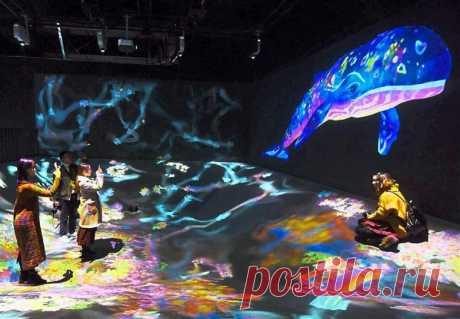 Инопланетный музей цифрового искусства в Токио / Туристический спутник