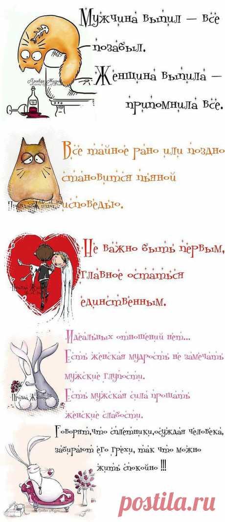 (+1) тема - открытки 3 | ПРИКОЛЫ