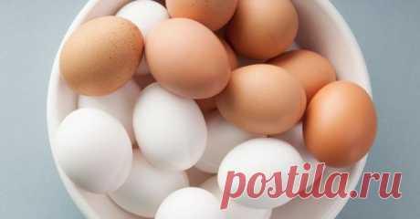 Вот чем в корне отличаются коричневые яйца от белых! Не знала, не знала…