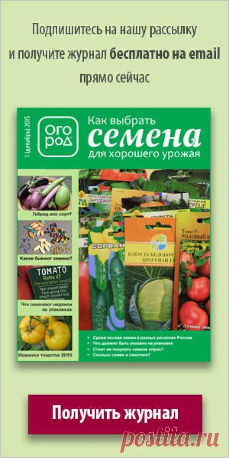 Форум для дачников | Огород.ru