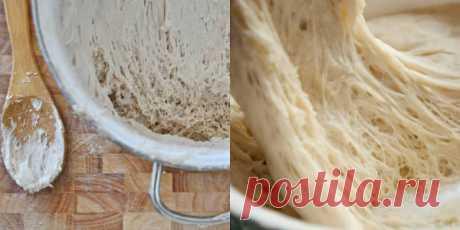 Закваска для хлеба Вечная: полезная выпечка без дрожжей всегда на столе