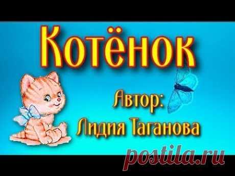 Котёнок Лидия Таганова Стихи детям - YouTube