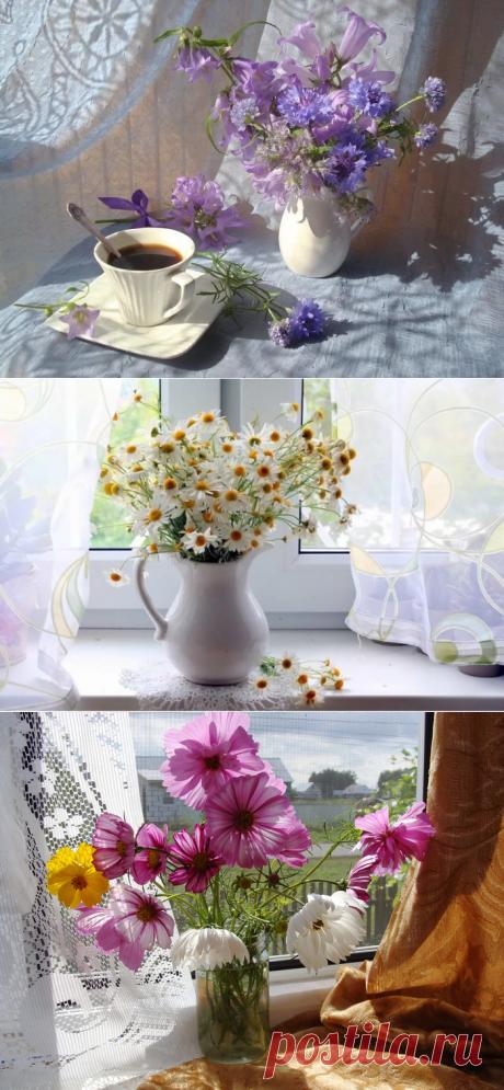 Натюрморты летнее утро за окном