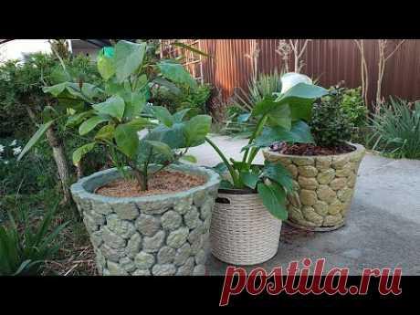 Кашпо для растений своими руками