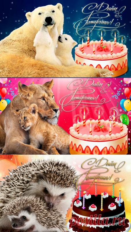 Тексты поздравления  и открытки с Днем рождения маме | Поздравления с Днем рождения | Яндекс Дзен