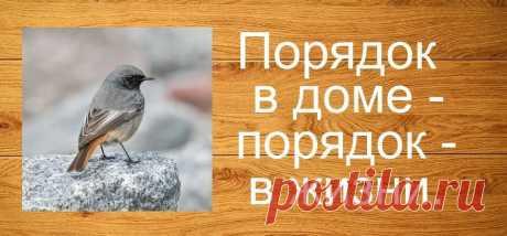 Выберите птичку, она нащебечет послание, нужное на данный момент | Cafe-mystic | Яндекс Дзен