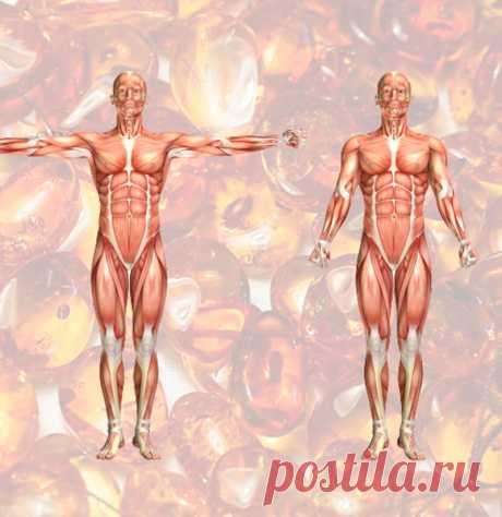 Янтарная кислота: недорогое натуральное средство, которое исцеляет и омолаживает весь организм - ПолонСил.ру - социальная сеть здоровья - медиаплатформа МирТесен