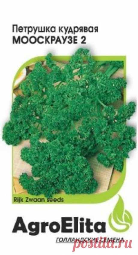 """Семена. Петрушка кудрявая """"Мооскраузе 2"""" (вес: 1 г) Раннеспелый (65-70 дней от всходов до технической спелости) листовой сорт. Розетка крупная, полураскидистая. Листья зеленые, с гофрированными краями. Обладает приятным запахом и вкусом благодаря наличию в листьях эфирных масел. Общий урожай зелени при многократной уборке достигает 2,0-2,5 кг/кв. м."""